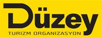 Düzey_logo_200