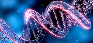 epigenetik_bulten300