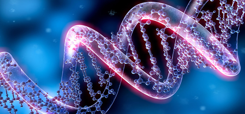 epigenetik_bulten800